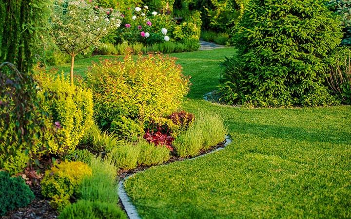 Stiluri și sfaturi pentru amenajarea grădinii