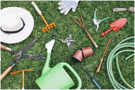 Idei și trucuri - amenajare grădina mică